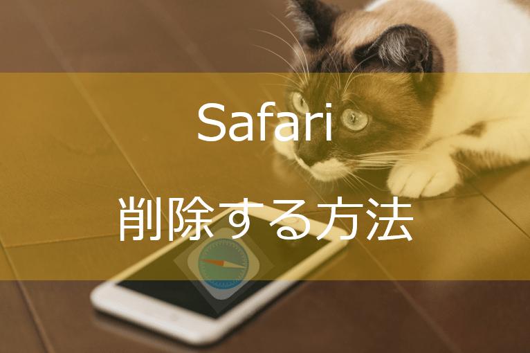 IphoneのSafariを消す猫