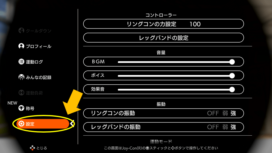 RingFitの設定画面